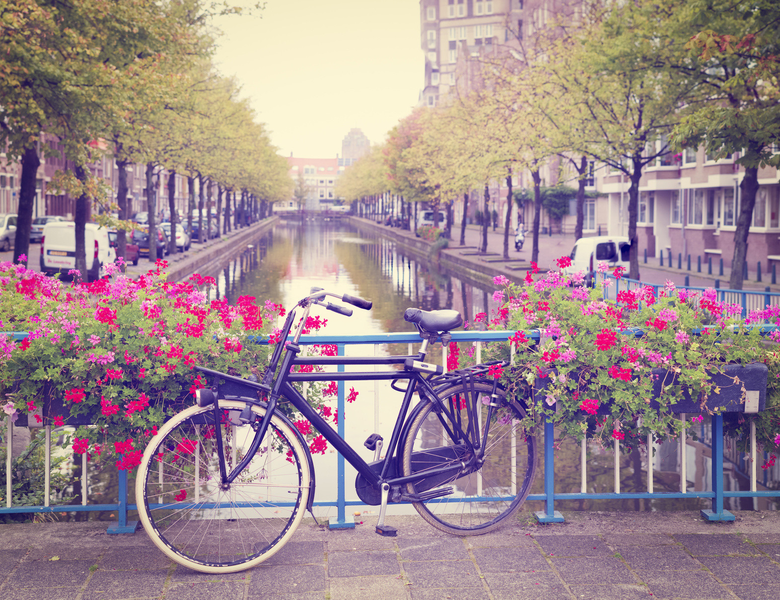 Niederländisch für Studium und Beruf – NT2-Prüfungsvorbereitung